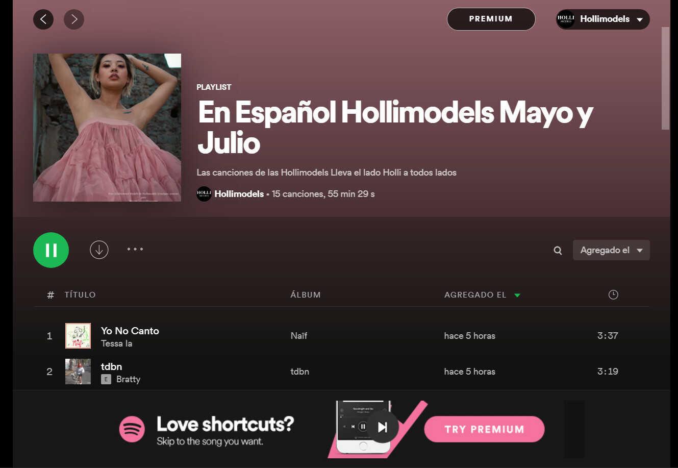Nueva lista de reproducción Hollimodels Spotify