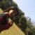 Foto del perfil de Ximena Evangelista Ruiz